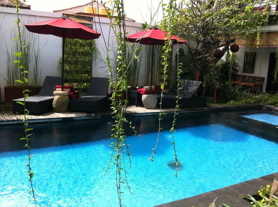 Kamar Kamar Rumah Tamu: The pool looks pretty, isn't it?