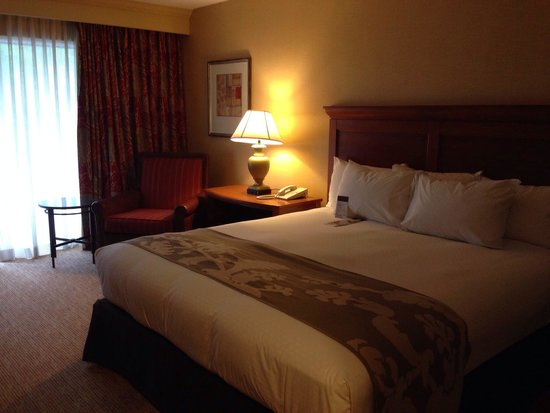 Doubletree by Hilton Seattle Airport : Nice room, clean and comfortable