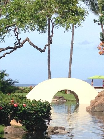 Hyatt Regency Maui Resort and Spa: View from Breakfast