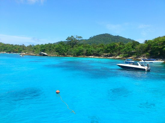 Sea Bees Diving - Chalong: View before dives