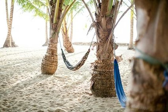 Peppercorn Beach Resort : a cocktail in the hammock...