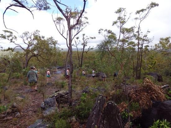 The Bama Way Aboriginal Journeys: Our Rock Art tour group