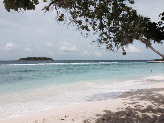 Bandos Maldives: Beach near room 291
