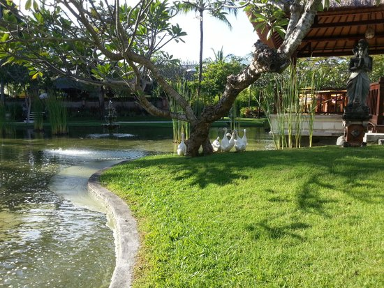 Nusa Dua Beach Hotel & Spa: Beautiful gardens