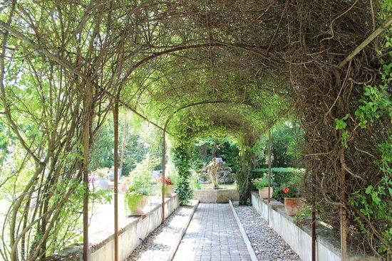 Villa Augusta : Jardin