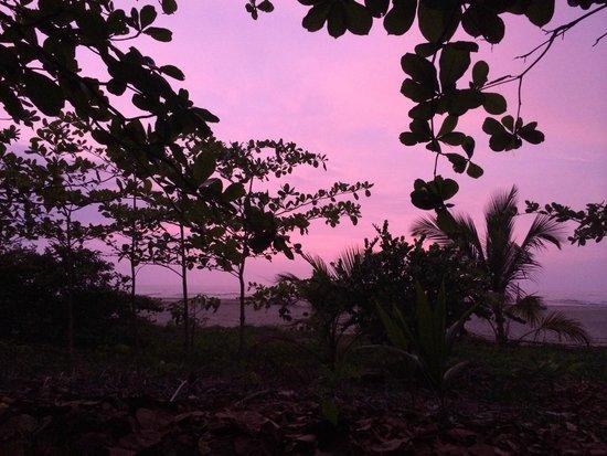 Playa Koralia: vISTA DESDE EL CAMPING