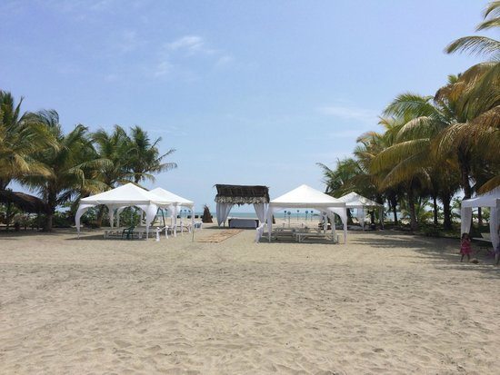 Playa Koralia: Matri al que fui