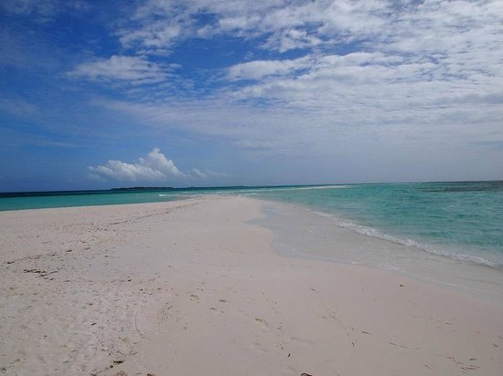Kuredu Island Resort & Spa : My favourite Sandbank at Sangu