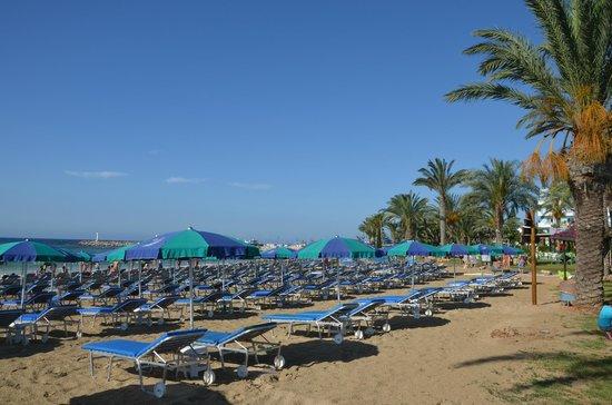 Napa Plaza Hotel: Пляж в Айя Напе