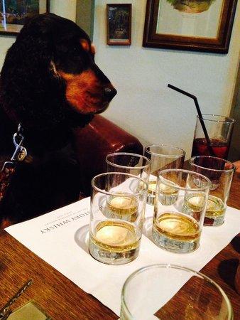 The Wild Boar: Bracken Whisky tasting
