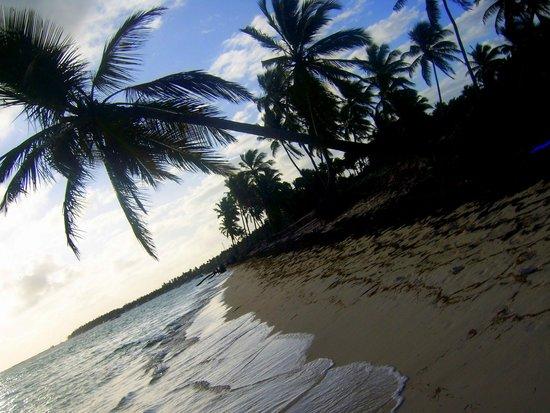 Be Live Collection Punta Cana: пляжик