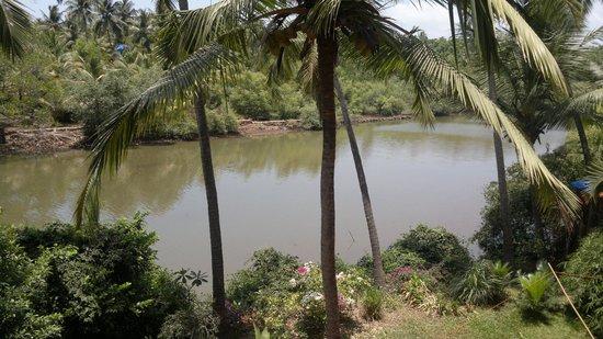 Ashiyana Yoga Resort Goa: after river ocean))