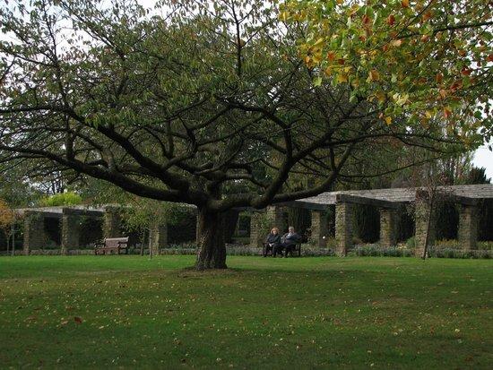 Winterbourne House and Garden: внутри садика