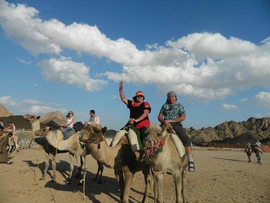 Sahara Desert: Сафари