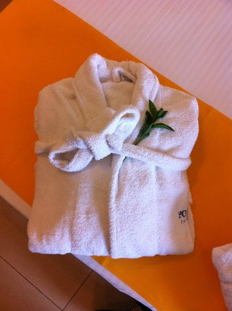 SENTIDO Port Royal Villas & Spa: The ants were on the robe and towels..maybe these leafs are the cause of the problem?
