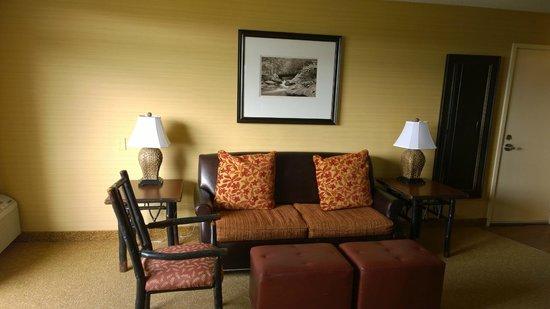Park Vista - DoubleTree by Hilton Hotel - Gatlinburg: Living room couch
