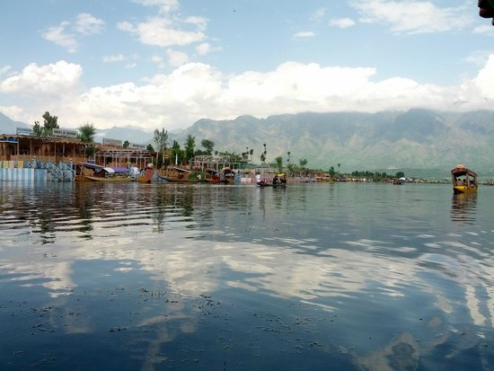 New Lucky Star Group of HouseBoats: Dal lake in the early evenings