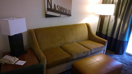 Embassy Suites by Hilton Nashville - Airport: Living room couch