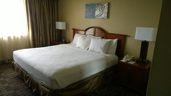 Embassy Suites by Hilton Nashville - Airport: King bed