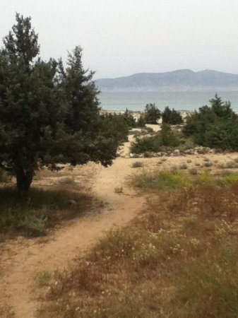 Faros Villa: path to the beach across the road