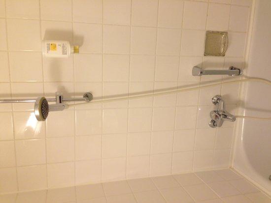 Hotel Excelsior: The shower was ok
