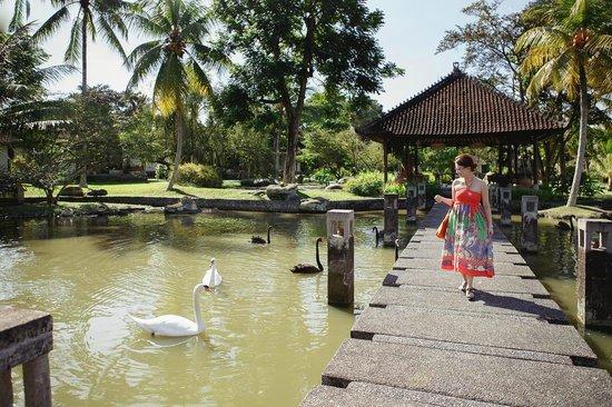 The Chedi Club Tanah Gajah, Ubud, Bali – a GHM hotel : Superb view around hotel