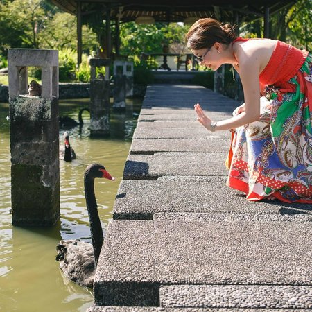 The Chedi Club Tanah Gajah, Ubud, Bali – a GHM hotel : The unique black swan!