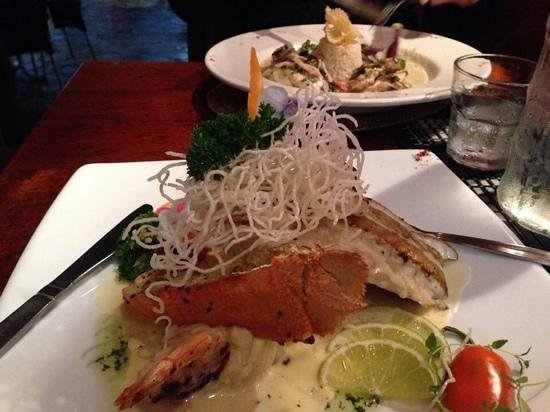 Colonies At The Cove : Baramundi dish, lovely presentation and taste