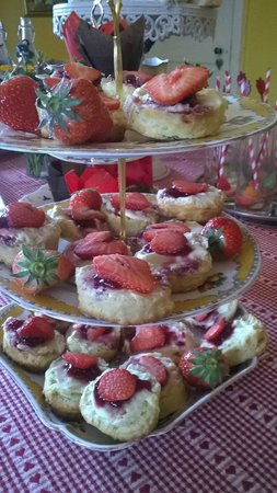 Huntstile Organic Farm: delicious scones for vintage tea party