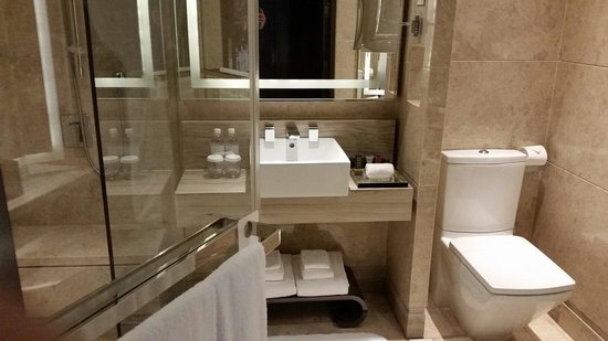 Singapore Marriott Tang Plaza Hotel: Bathroom