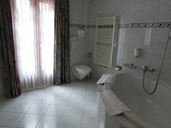 Hotel Restaurant Derby : 風呂