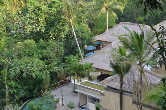 The Lokha Ubud: The view from our room down toward the pool and dining area