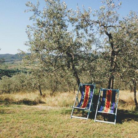 Ancora del Chianti Eco BB & Art Retreat in Tuscany : Place to relax