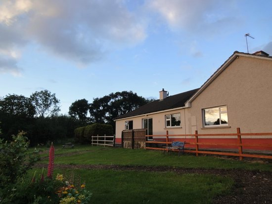 Dunloe View Hostel : the backyard