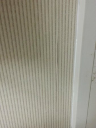 Embassy Suites by Hilton Arcadia Pasadena Area: Wall paper peeling