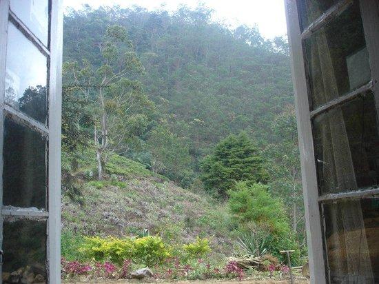 Hill Safari Eco Lodge Ohiya: View