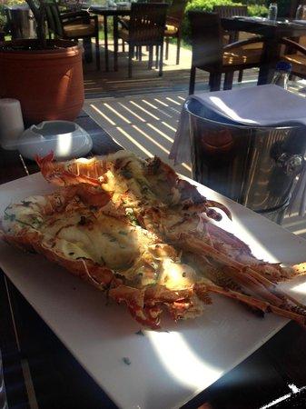 Cape Sounio, Grecotel Exclusive Resort : Lobster @ Aegean Grill