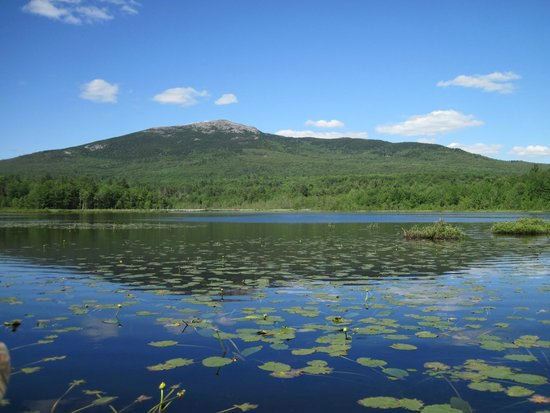Troy, NH: Mt. Monadnock