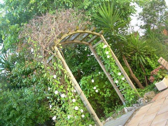 Hotel Teranga : giardino hotel