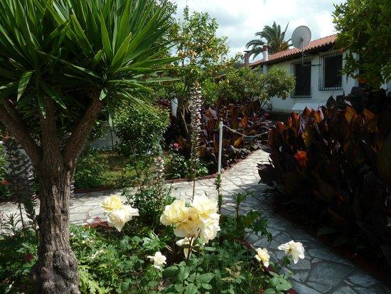 Semeli Hotel : jardin