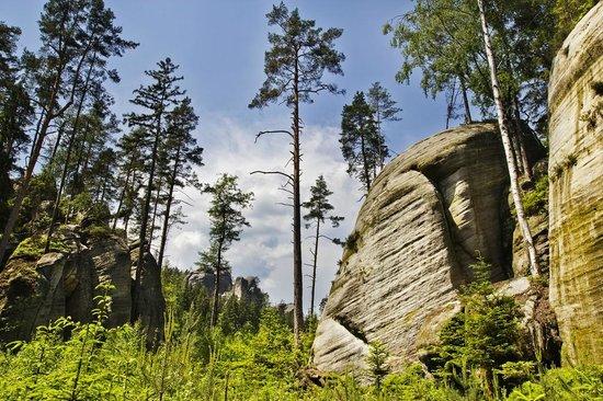 Adrspach-Teplice Rocks : Adrspach