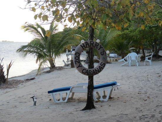 Harry's Cozy Cabanas: beach