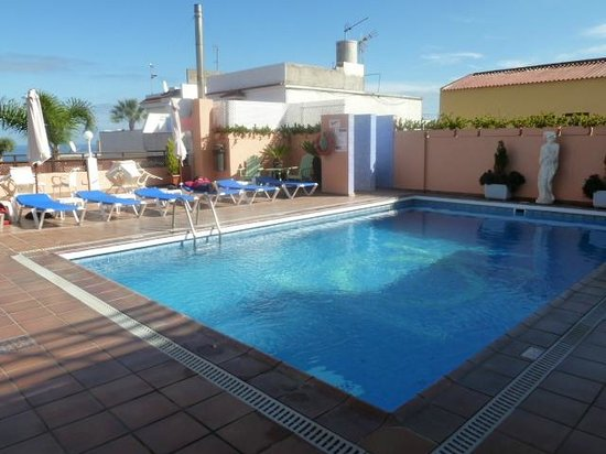 Globales Acuario: piscine