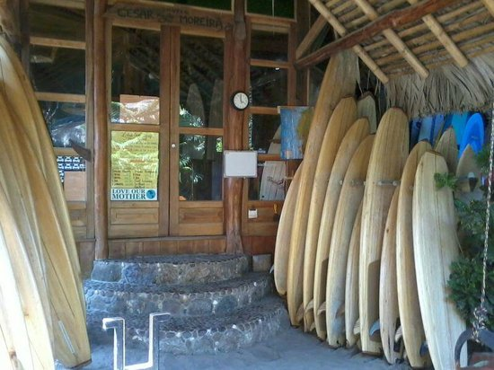 Balsa Surf Camp: Boards for rent