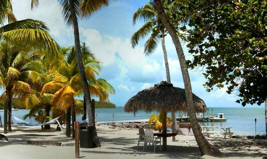 Lime Tree Bay Resort : relax at a tiki table,in a hammock or on the beach