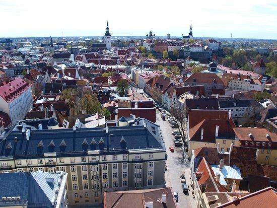 Tallinn Old Town: view from the church