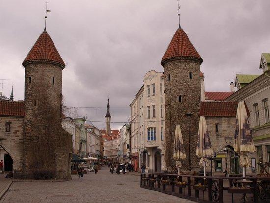 Tallinn Old Town: gate