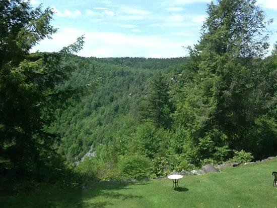 Blackwater Falls State Park Lodge: view from the room