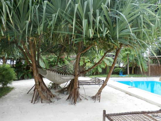 Matemwe Bandas Boutique Hotel, Zanzibar: lovely details