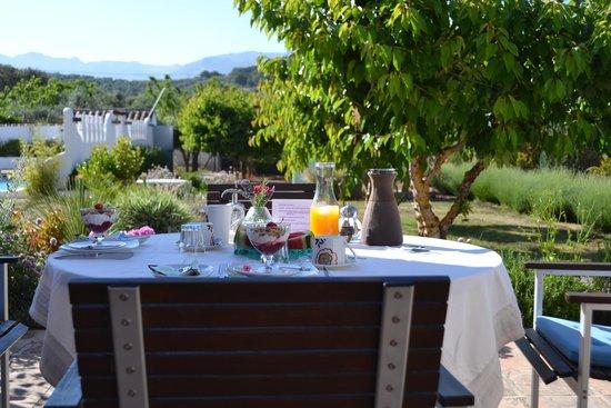 Finca Los Pinos Guesthouse: Breakfast